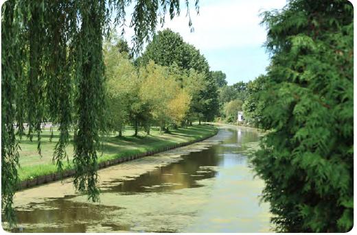 Opinie: Gedraai in Heemskerk over beschermen groene lopers