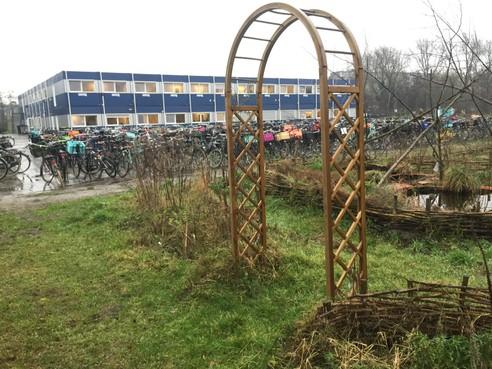 Rudolf Steiner College Haarlem wint prijs voor beste lessen relaties en seksualiteit