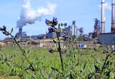 Provincie ziet groene toekomst voor Tata Steel, omwonenden geloven het pas als ze het zien