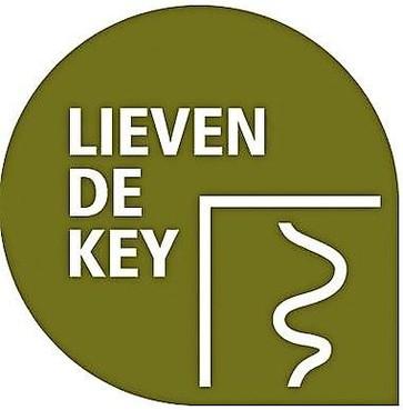 Kandidaten gezocht voor Haarlemse stadsprijs Lieven de Key Penning