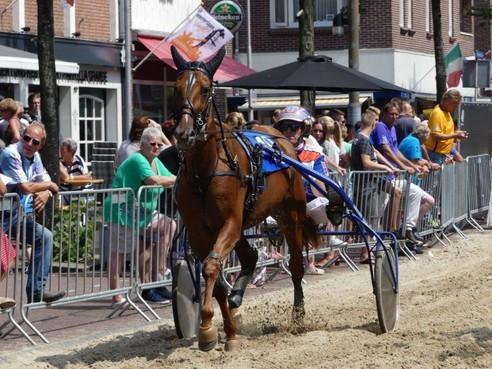 IJmuidense vriendengroep koopt een paard: Elma Alki mag debuut maken op kortebaan